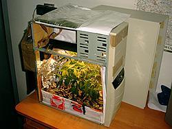 Komputerowe narkotyki
